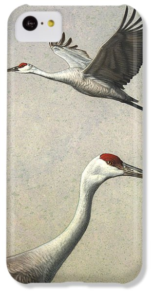 Sandhill Cranes IPhone 5c Case