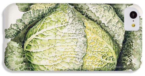 Savoy Cabbage  IPhone 5c Case