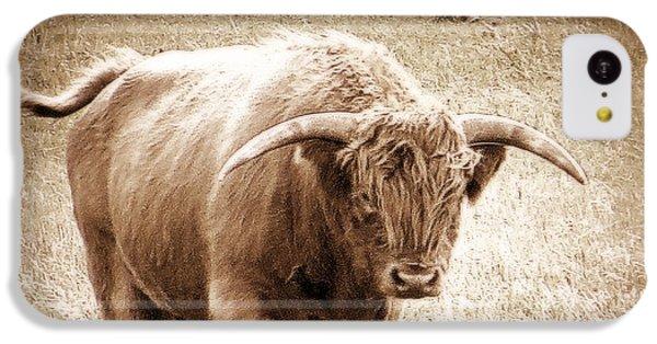 Scottish Highlander Bull IPhone 5c Case by Karen Shackles