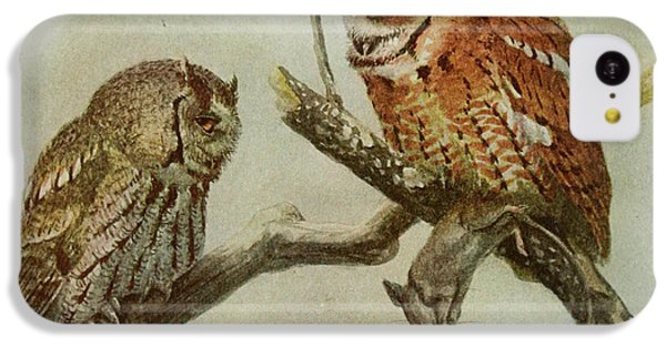 Screech Owls IPhone 5c Case by Rob Dreyer