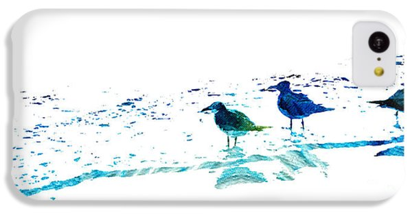 Seagull Art - On The Shore - By Sharon Cummings IPhone 5c Case