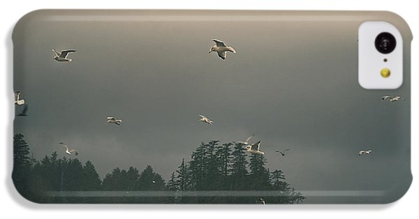 Seagulls In A Storm IPhone 5c Case