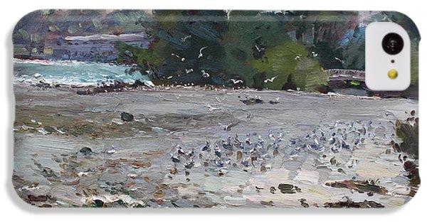 Seagull iPhone 5c Case - Seagulls On Niagara River by Ylli Haruni