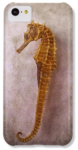 Seahorse Still Life IPhone 5c Case