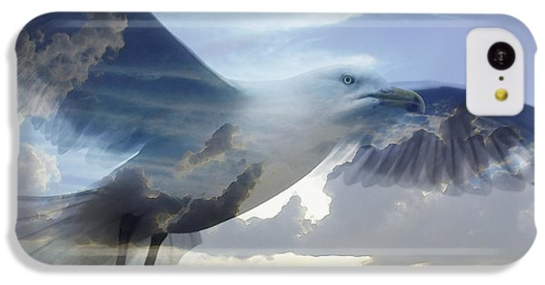 Searching The Sea - Seagull Art By Sharon Cummings IPhone 5c Case