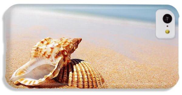 Beach iPhone 5c Case - Seashell And Conch by Carlos Caetano