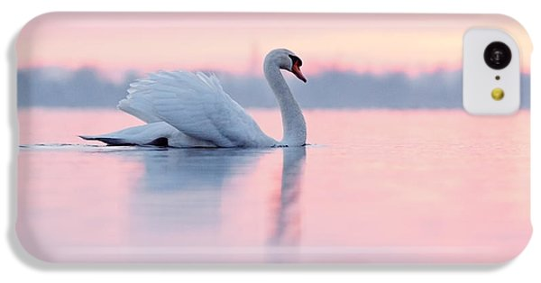 Swan iPhone 5c Case - Serenity   Mute Swan At Sunset by Roeselien Raimond
