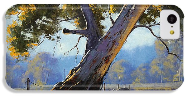 Shady Tree IPhone 5c Case by Graham Gercken