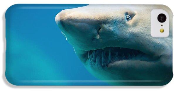 Bull iPhone 5c Case - Shark by Johan Swanepoel