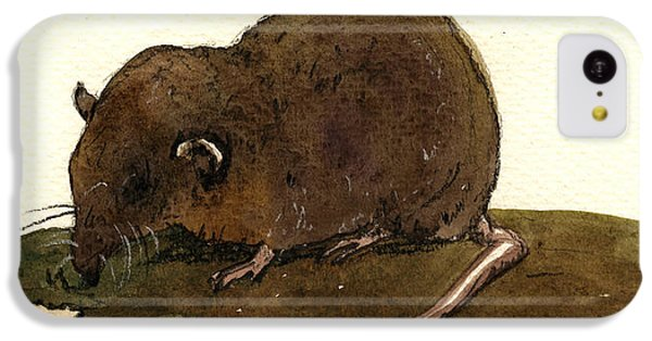 Mouse iPhone 5c Case - Shrew Mouse by Juan  Bosco