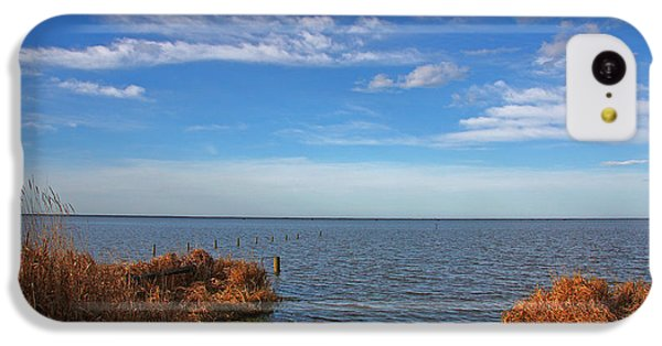 IPhone 5c Case featuring the photograph Sky Water And Grasses by Nareeta Martin