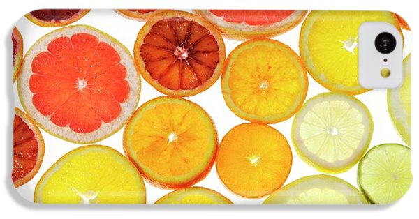 Slices Of Citrus Fruit IPhone 5c Case by Cordelia Molloy