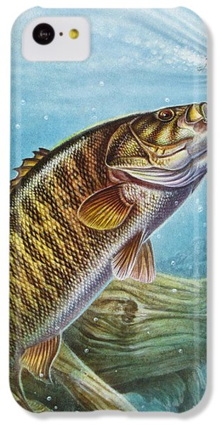 Bass iPhone 5c Case - Smallmouth Bass by JQ Licensing