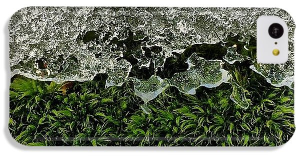 Detail iPhone 5c Case - Snow & Moss, 2015.02.07 #bmr #lehman by Aaron Campbell