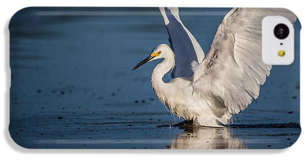 Snowy Egret Frolicking In The Water IPhone 5c Case