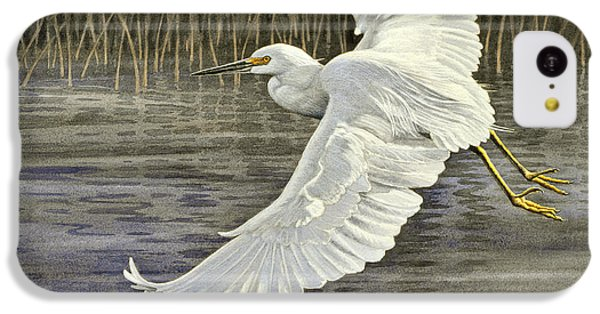 Snowy Egret IPhone 5c Case