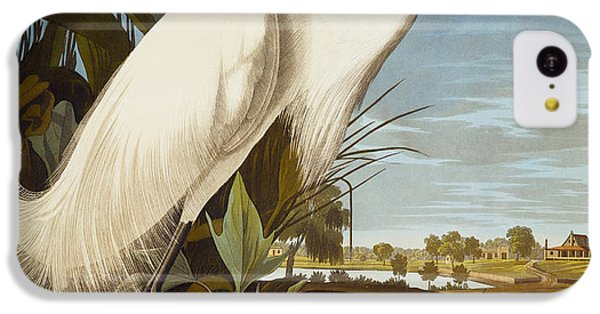 Snowy Heron Or White Egret IPhone 5c Case by John James Audubon