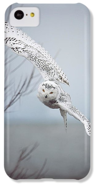 Nature iPhone 5c Case - Snowy Owl In Flight by Carrie Ann Grippo-Pike