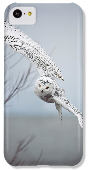 Snowy Owl In Flight IPhone 5c Case by Carrie Ann Grippo-Pike