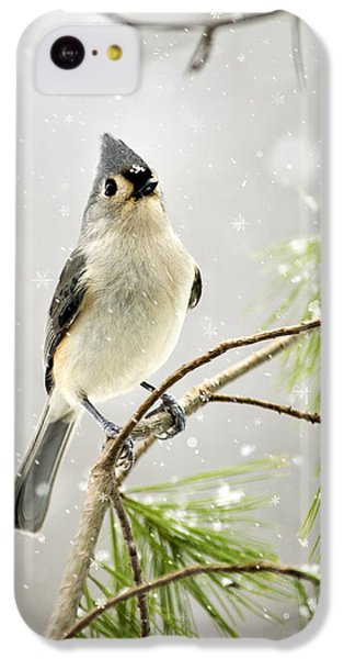 Snowy Songbird IPhone 5c Case by Christina Rollo