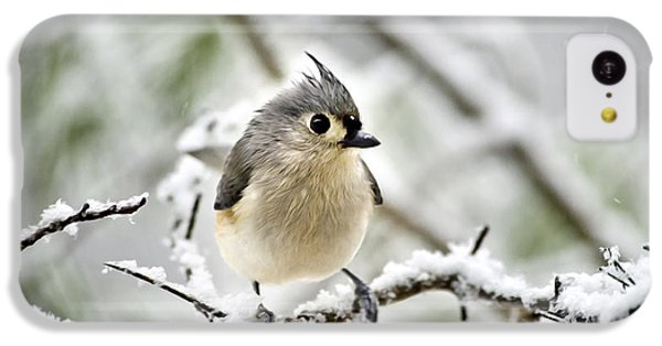 Snowy Tufted Titmouse IPhone 5c Case