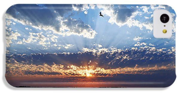 Soaring Sunset IPhone 5c Case by Anthony Baatz