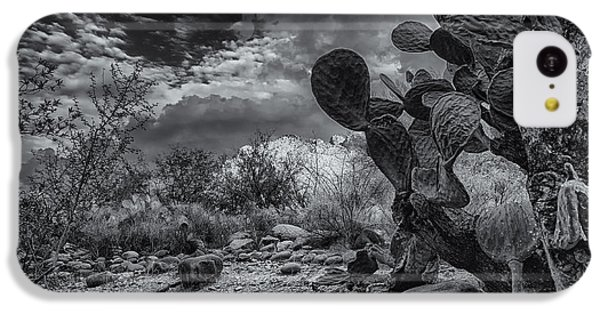 IPhone 5c Case featuring the photograph Sonoran Desert 15 by Mark Myhaver