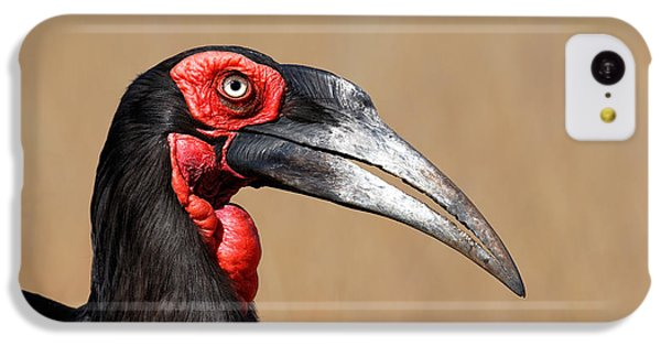 Southern Ground Hornbill Portrait Side View IPhone 5c Case by Johan Swanepoel