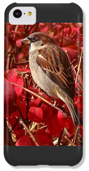 Sparrow IPhone 5c Case