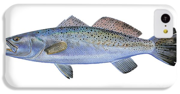 Drum iPhone 5c Case - Speckled Trout by Carey Chen