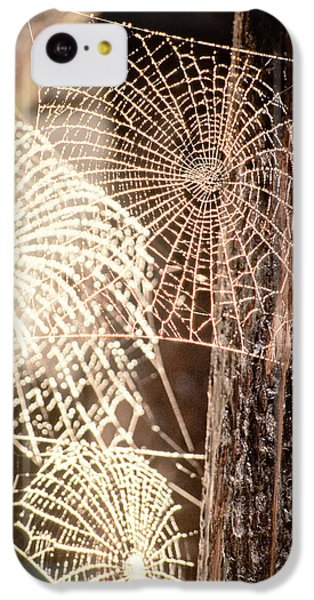 Spider Webs IPhone 5c Case by Anonymous
