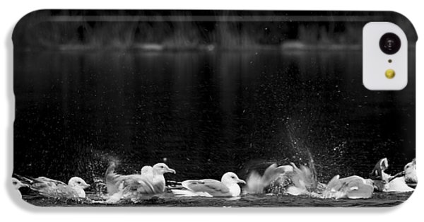 IPhone 5c Case featuring the photograph Splashing Seagulls by Yulia Kazansky
