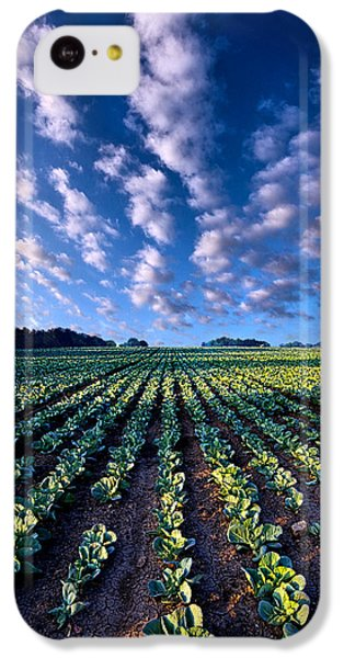 Spring Fresh IPhone 5c Case by Phil Koch