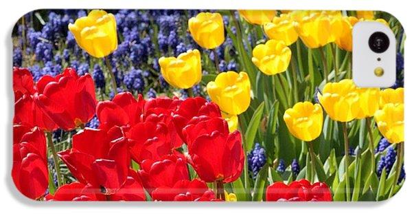 Spring Sunshine IPhone 5c Case