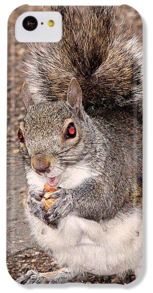 Squirrel Possessed IPhone 5c Case
