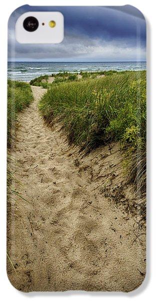 Stormy Beach IPhone 5c Case