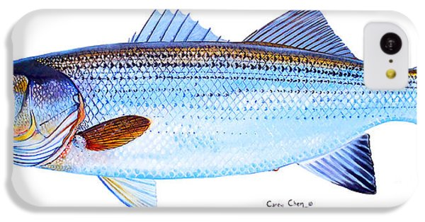 Striped Bass IPhone 5c Case by Carey Chen