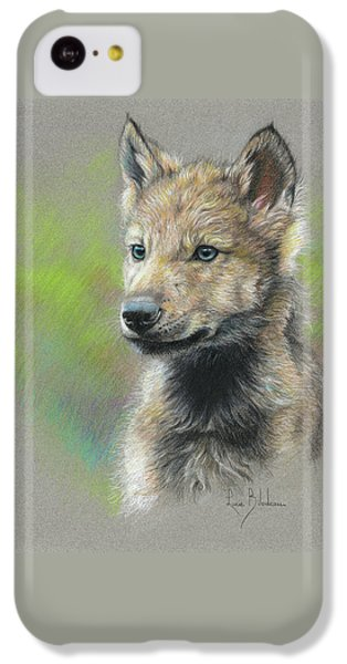 Study - Baby Wolf IPhone 5c Case