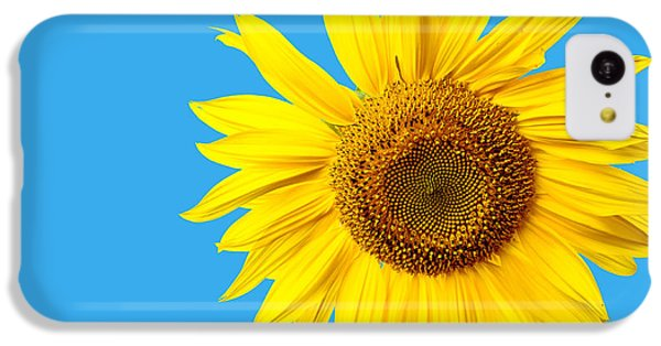 Sunflower iPhone 5c Case - Sunflower Blue Sky by Edward Fielding