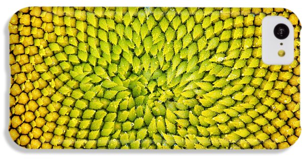 Sunflower iPhone 5c Case - Sunflower Middle  by Tim Gainey