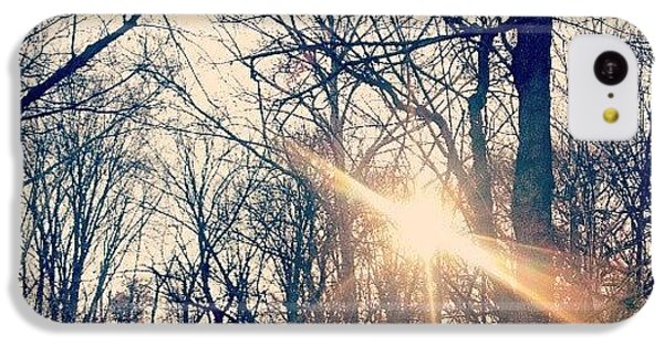 Sunlight Through The Trees IPhone 5c Case by Genevieve Esson
