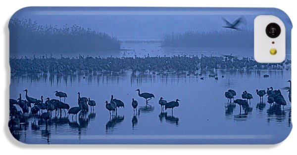 Sunrise Over The Hula Valley Israel 4 IPhone 5c Case