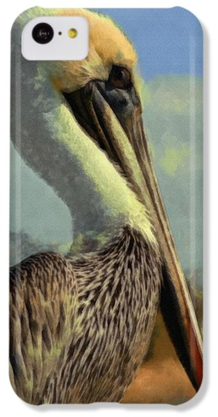 Sunrise Pelican IPhone 5c Case by Ernie Echols