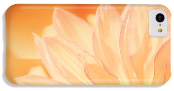 Daisy iPhone 5c Case - Sunshine by Scott Norris