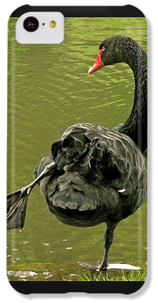 Swan Yoga IPhone 5c Case by Rona Black