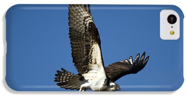 Take Flight IPhone 5c Case by Mike  Dawson