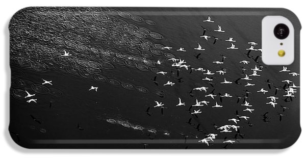 Helicopter iPhone 5c Case - Take Off by John Fan
