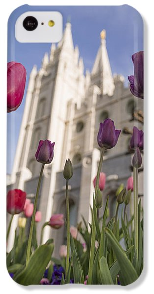 Tulip iPhone 5c Case - Temple Tulips by Chad Dutson