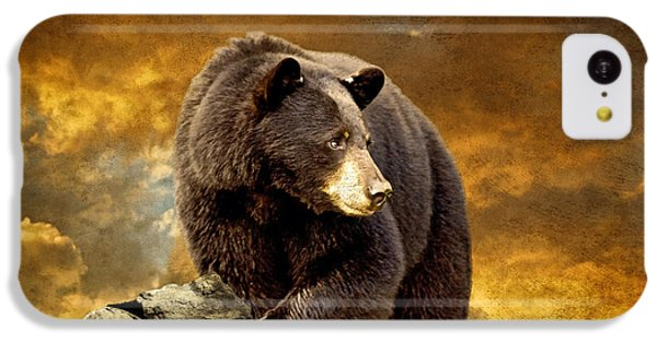 The Bear Went Over The Mountain IPhone 5c Case