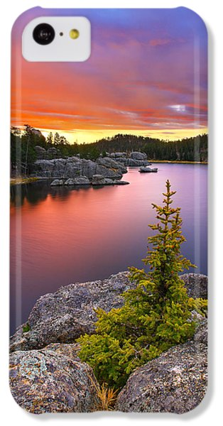 Landscapes iPhone 5c Case - The Bonsai by Kadek Susanto